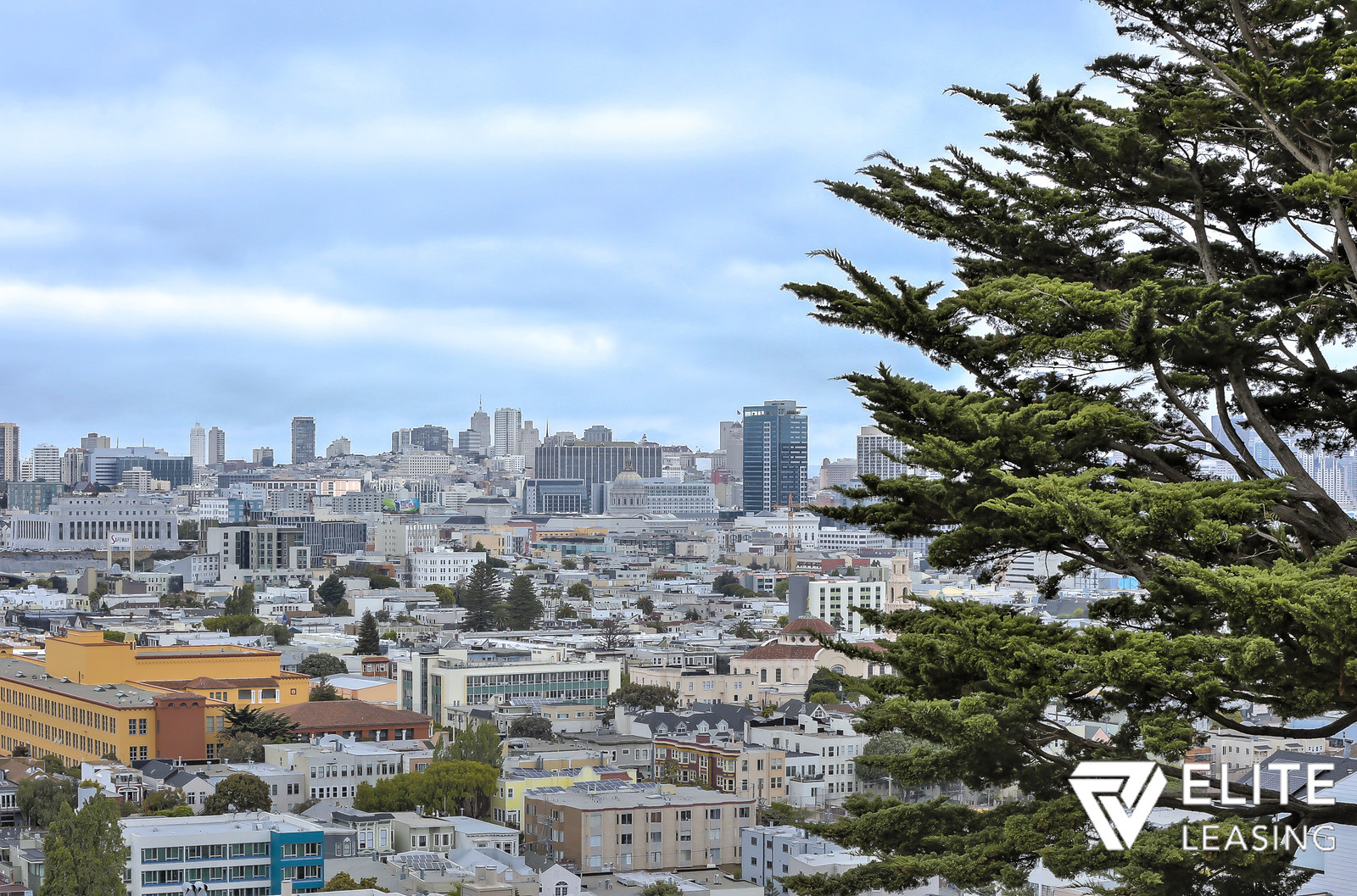 Listing 4649 : 190  Rutledge Street, San Francisco, CA, 94110  (photo 3)